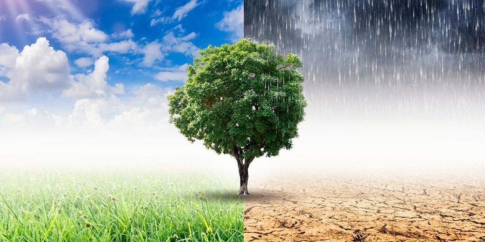 Assicurazioni, Sos Ue sul clima